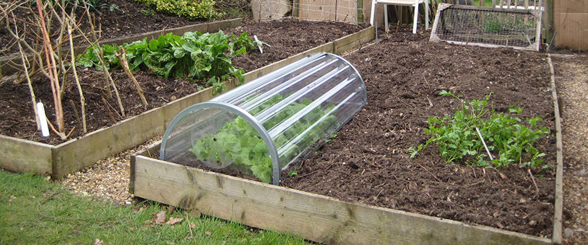Garden and allotment safety